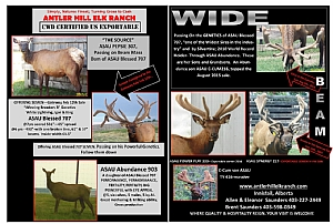 1 Antler Hill Elk Ranch