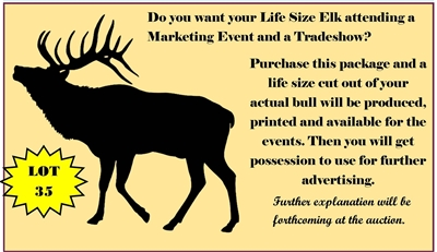 Marketing Opportunity - Life size cut out of your bull