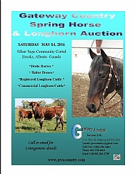 1 Gateway Country Spring Horse & Longhorn Auction
