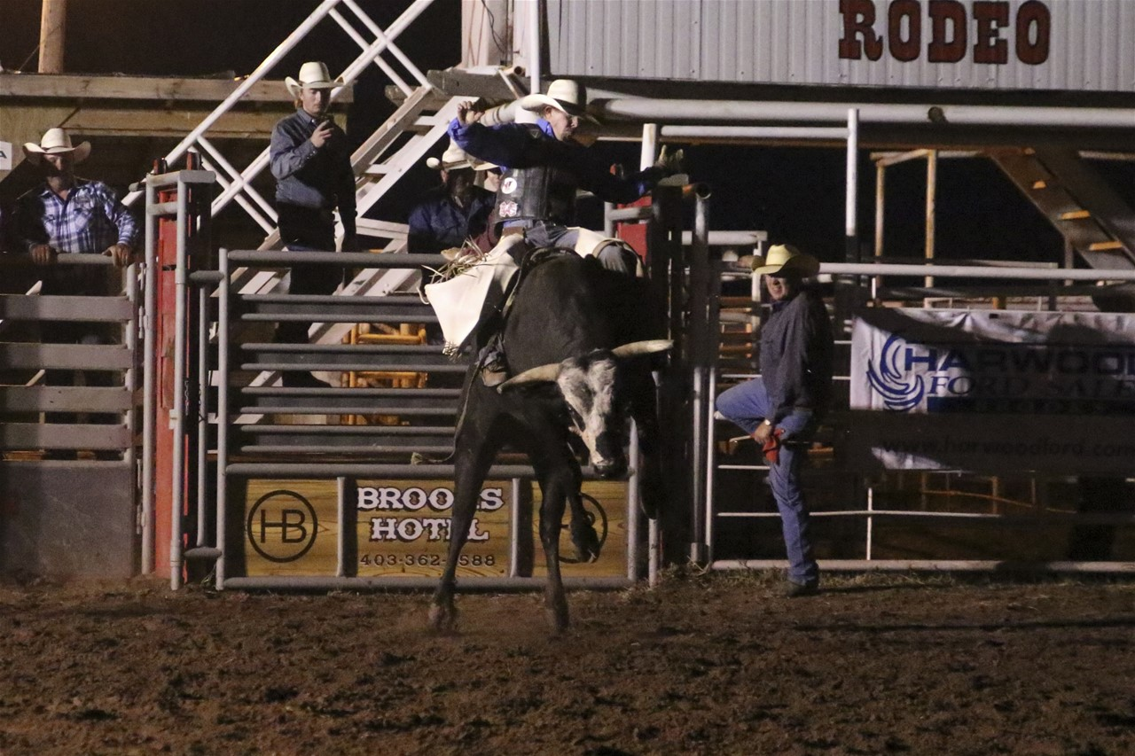 Open Bull Riding Under the Lights $5000 added Friday Night