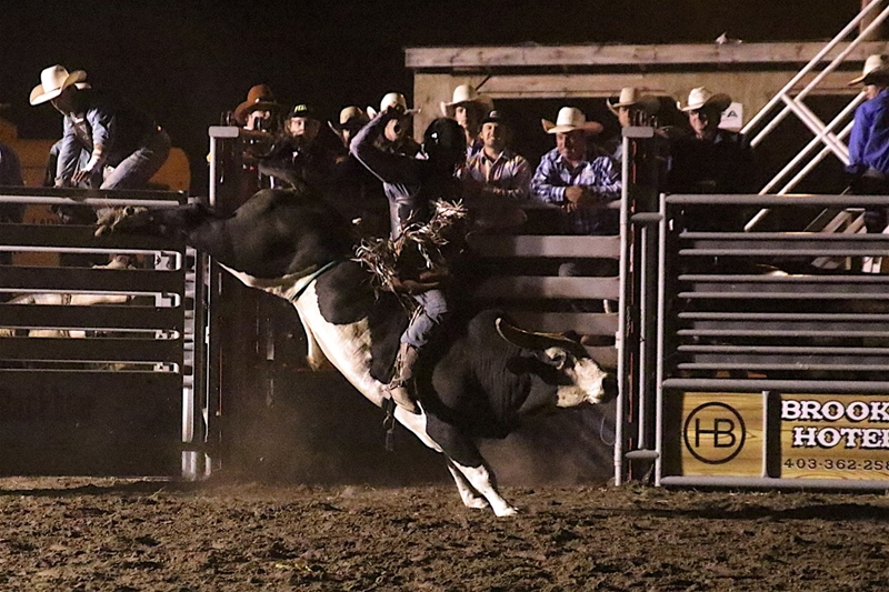 Image #3 (Open Bull Riding Under the Lights $5000 added Friday Night)