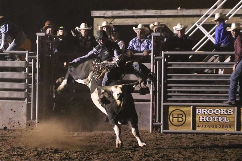 Image #4 (Open Bull Riding Under the Lights $5000 added Friday Night)