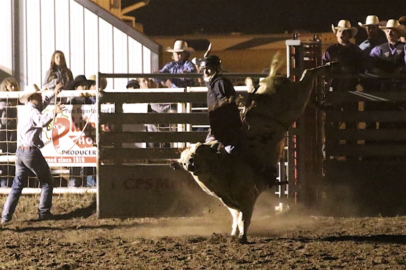 Image #5 (Open Bull Riding Under the Lights $5000 added Friday Night)