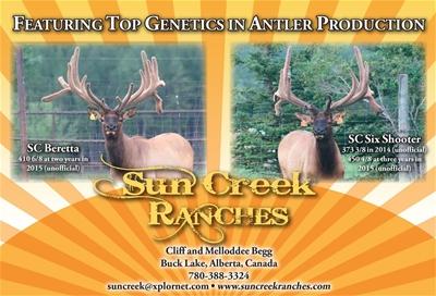 Sun Creek Ranches